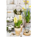 Textilposter Frühling Spring Garden Motiv Blumen...